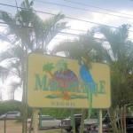 Margaritaville Negril Jamaica
