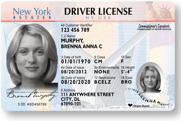 NYS Drivers License new look